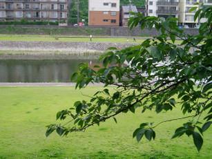 Saigawa